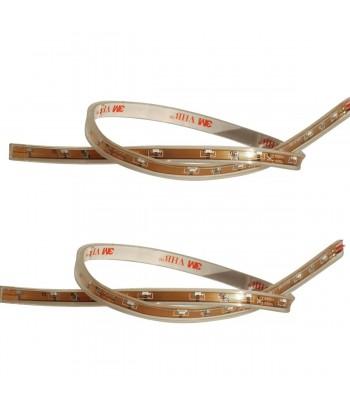Flexible stripes Cassiopea