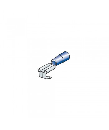 10 terminali - capicorda doppio innesto maschio+femmina - Blu