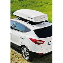 Box 530, box tetto in ABS,...