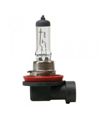 12V Lampada alogena - H8 - 35W - PGJ19-1 - 1 pz  - D/Blister
