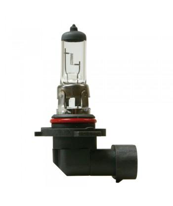 12V Lampada alogena - H10 - 42W - PY20d - 1 pz  - D/Blister