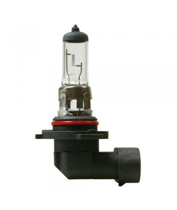 12V Lampada alogena - H10 - 42W - PY20d - 1 pz  - Scatola