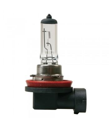 12V Lampada alogena - H11 - 55W - PGJ19-2 - 1 pz  - D/Blister