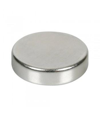 Disco magnetico al neodimio - 121N - 30x7 mm - Sfuso