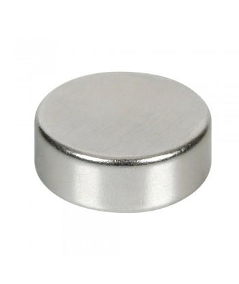 Disco magnetico al neodimio - 132N - 27x10 mm - Sfuso
